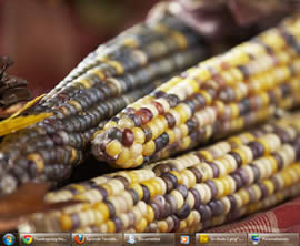tema windows 7 Autumn Bounty